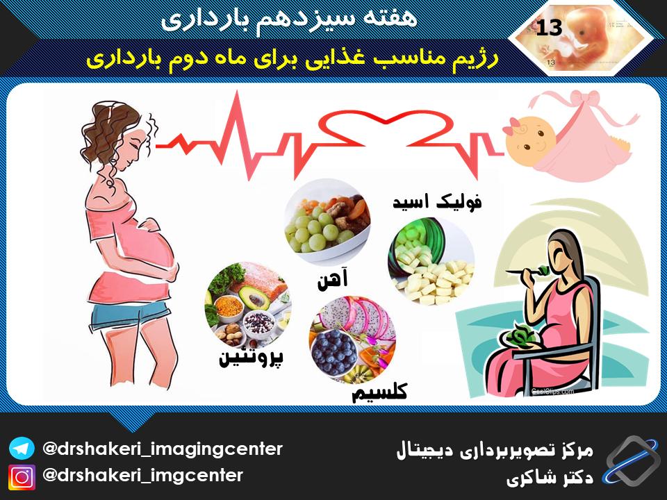 رژیم مناسب غذایی برای ماه دوم بارداری