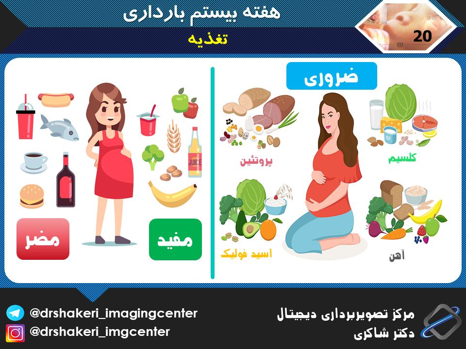 تغذیه هفته بیستم بارداری